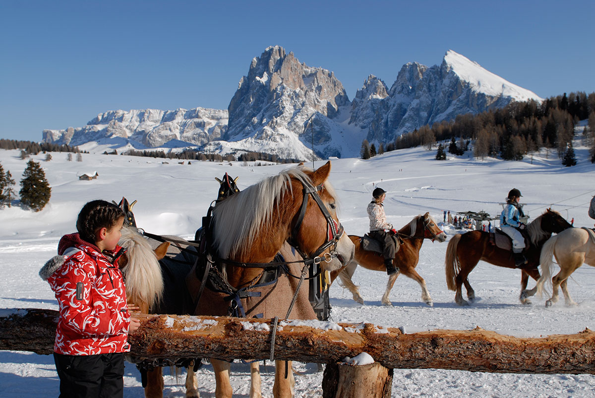 Riding in Winter on Alpe di Siusi
