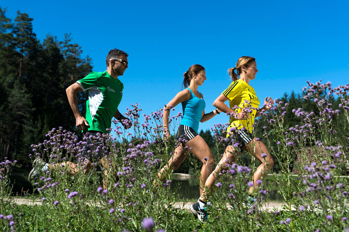Running trails on Alpe di Siusi in the Dolomites