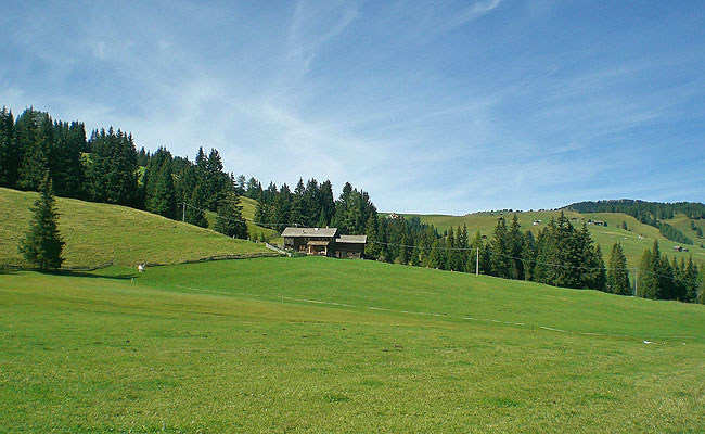 The Pluner cottage midst of green meadows on Alpe di Siusi